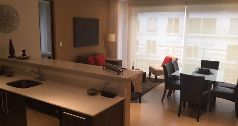F 2533 LUXURY 2 BEDROOM FURNISHED  APARTMENT WITH AC IN THE BEST LOCATION IN DISTRITO CUATRO, ESCAZU