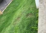 area verde frontal