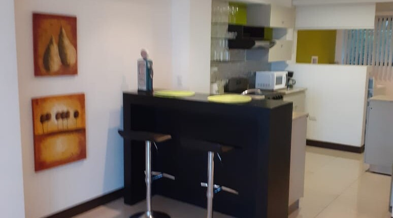 F 3338 Two bedroom fully furnished apartment single level apartment in Guachipelin de Escazu