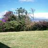 31 pano garden